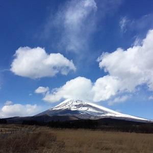 2017 1.23 fuji.jpg