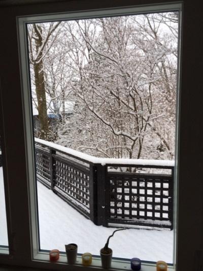 2月9日雪.jpg