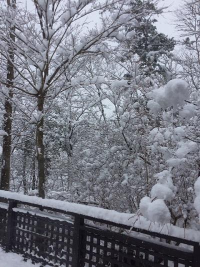 3.26雪.jpg