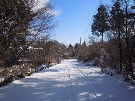 初積雪1.jpg