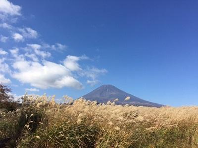 薄と富士山2017.JPG