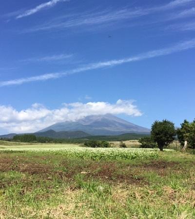 そばと富士山.jpg